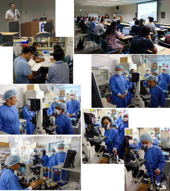 2016 5th Summer course