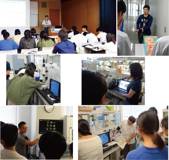 The Labo Tour for Shizuoka Municipal High School Students