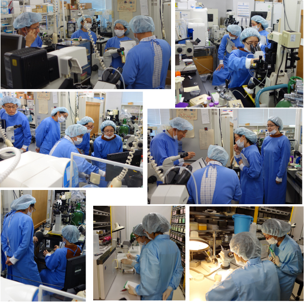 Post-workshop lab tour of embryo manipulation for members from Cambridge-Soochow Univ Genomic Research Center