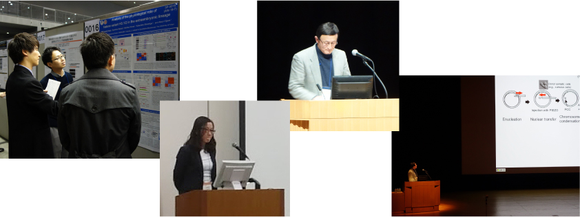 The 42nd Annual Meeting of the Molecular Biology Society of Japan