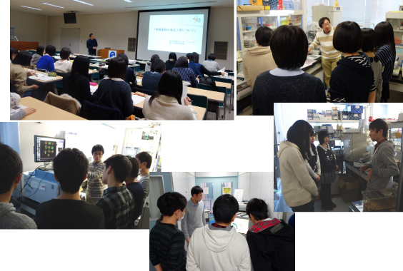 The Labo Tour for Goshogawara High School