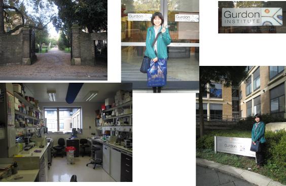 Mis Oikawa Visited the Gurdon Institute